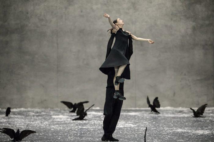 Rufus Didwiszus, Winterreise   Choreography C. Spuck   © Gregory Batardon